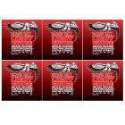 ERNIE BALL Light Electric Nickel Wound Guitar Strings (2208) - 6 Pack